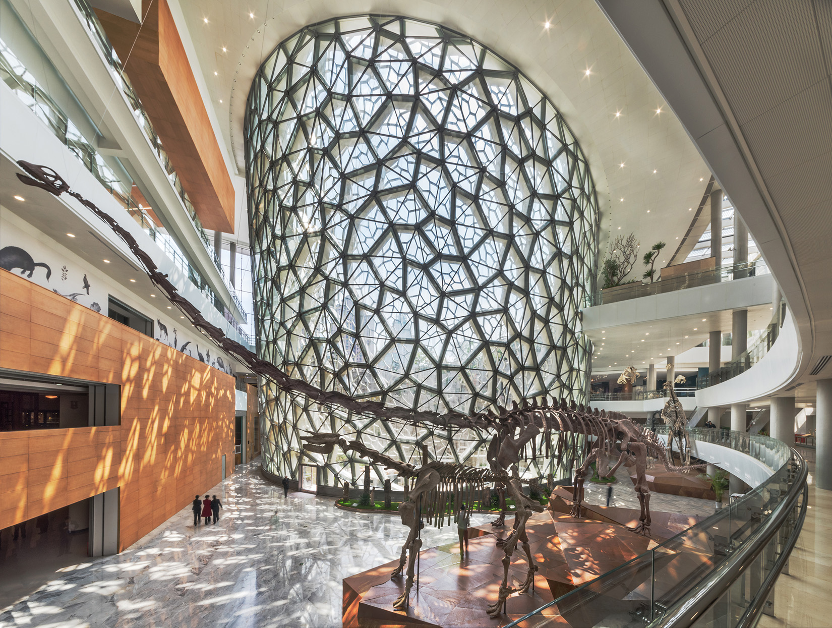Shanghai Natural History Museum 2015 Design Excellence